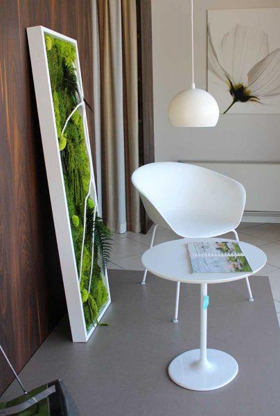 Studiobang grafica e siti web green design con le piante for Ufficio verde