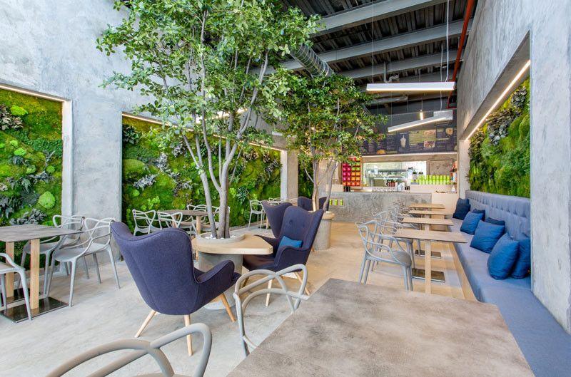 Parete Verde Ufficio : Studiobang grafica e siti web green design con le piante