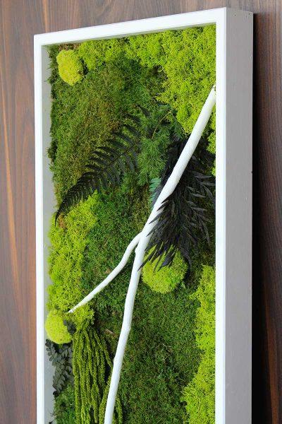 Parete Piante Artificiali : Studiobang grafica e siti web green design con le piante